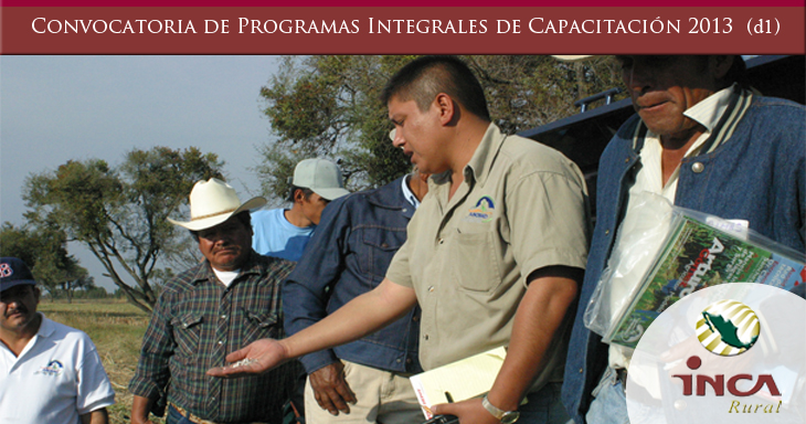 Programas Integrales de Capacitacion d1-2013